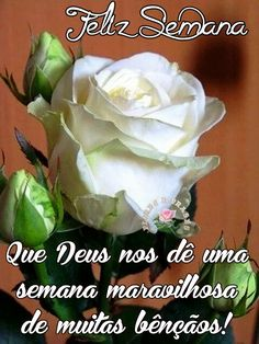 Mark Kay, Weekend Fun, White Roses, Floral Design, Facebook, Blessings, Inspirational, Quotes, Wedding