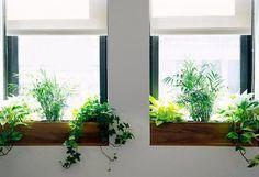 7-ideas-para-aprovechar-mejor-las-ventanas-01
