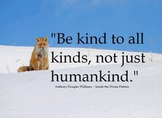 Be kind to all kinds, not just humankind.