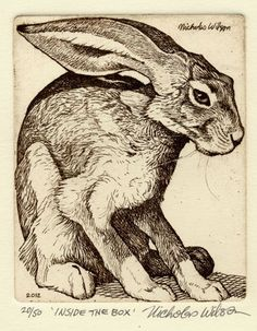 "Nicholas Wilson etching of Jackrabbit ""INSIDE THE BOX""."