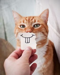 a funny smile.