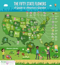 Here are the flowers that you need to plant in order to celebrate our country's botanical heritage!