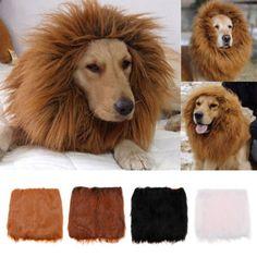 Dog Clothing Lion