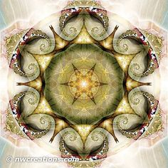 Flower of Life Mandala 19 - © Atmara Rebecca Cloe and New World Creations - http://www.zazzle.com/New_World_Creations?rf=238526469533245868