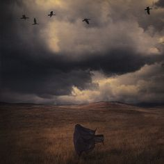 Wind Rider by Brooke Shaden. When does a photo cease becoming a photo and then become a digital illustration? Brooke's work is strong, but the amount of compositing makes me ask that question often. I like that her images maintain a photographic quality, but I see so many other photographers who seem to deviate from the medium entirely. Does it even matter?