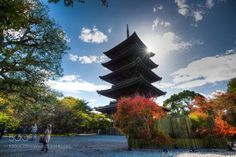 Toji temple Kyoto Japan by meteorshoweryn  sky travel tourism tree building wood meteorshoweryn