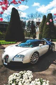 Bugatti Veyron....a girl can dream big 😉