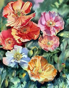 Ann Mortimer   WATERCOLOR