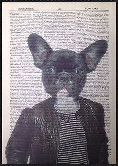 Bulldog In a suit Dictionary Art Print Wall Vintage Picture Animal In Clothes