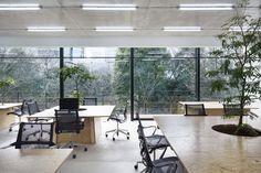 Gallery of Nakagawa Masashichi Shoten Omotesando Shop & Office / Schemata Architects - 2