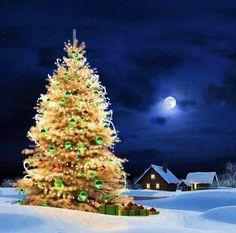 FULL MOON ON CHRISTMAS EVE