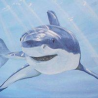 Shark mural. Boys room - Markham Ontario.  Cindy Scaife for Paint A Lifestyle. - Cindy Scaife Murals