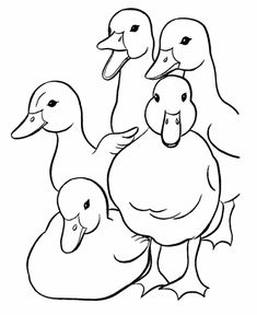Free Printable Easter Duck Family Coloring Page Sheets For Kids Before The Holiday Including Ducks Duckies And