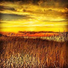 Sonnenuntergang und wir stehen frei. Wie jede Nacht.  #vanlife #wohnmobil #arbeitenunterwegs #digitalenomaden #sonnenuntergang #homeiswhereyouparkit