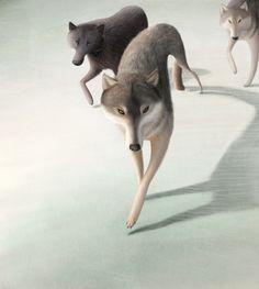 Animals by Varya Kolesnikova