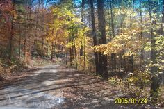Roaring Fork, Jefferson National Forest, Tazewell County Virginia