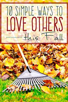 Fall is the perfect time to get back into the habit of loving others well. If…