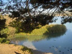 Lake Merced, San Francisco