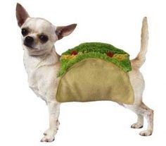 Disfraz de taco para perros | La Guarida Geek