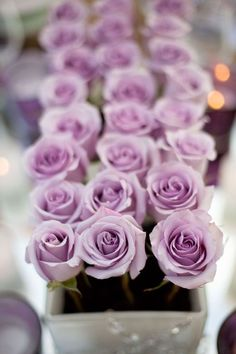 Lilac roses - love the colour, husband got me some similar ones day we got married. Lasted for ages :-)