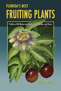 My favorite for referencing different fruiting plants that grow well in Florida.