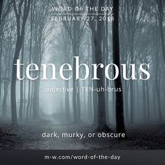 Today's #wordoftheday is 'tenebrous' . #language #merriamwebster #dictionary #frenchlanguagelearning