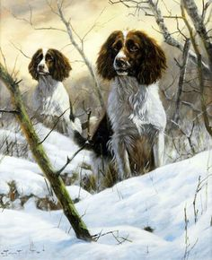 Image: Springer Spaniels in Snow by John Trickett is one of the oil on canvas painting of dogs expected to make record price at auction