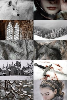"a song of ice and fire: house stark """"winter is coming"" """