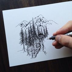 woods & mountains