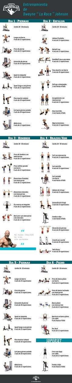 Full body Workout - 4 day plan.