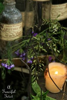 Spells and potions, gathering herbs....