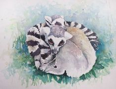Watercolour painting of Two Lemurs by WatercoloursForSale on Etsy Watercolours, Watercolour Painting, Art Tutor, Lemurs, Oil Painting For Sale, Nature Center, Pencil Drawings, Art Lessons, Art Projects
