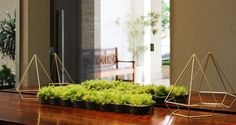 awesome 30 Indoor & Outdoor Moss Decorative Ideas  #Art #best #Decoration #DIY #Herb #Miniature #Nature #Recycled #UrbanGardening #VerticalGarden In the garden, on the terrace or in deco, the vegetable moss invades our house to liven up the space of life. Decorative painting, green clock or orig...