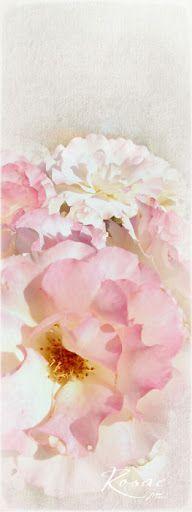 Gallery 2012 - Judy at TOC - Picasa Web Albums Albums, Memories, Watercolor, Digital, Gallery, Artwork, Picasa, Memoirs, Pen And Wash