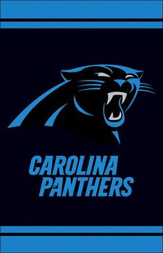 Pin By Katie On Carolina Panthers Pinterest Panthers Carolina