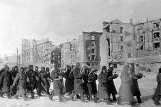 The battle of Stalingrad Battle Of Stalingrad, Luftwaffe, Soviet Union, Historian, World War Ii, Ww2, The Past, Army, Military