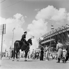 Politie te paard, Feyenoord stadion, Rotterdam (1950-1959) - Rotterdam, Dutch, Photographers, Horses, Animals, Palmas, Animales, Dutch Language, Animaux