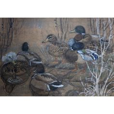 Charles Frederick Tunnicliffe, RA (1901-1979)   Lawrences Auctioneers British Wildlife, Art For Sale, Illustrator, Fine Art, Artist, Painting, Artists, Painting Art, Paintings