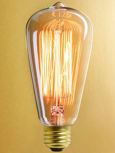 Edison style bulb. This company recreates vintage hardware and etc...