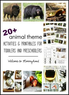 20+ montessori inspired animal themed activities and printables for toddlers and preschoolers by Welcome to Mommyhood #montessori, #montessoriinspired, #preschoolactivities, #preschool, #toddleractivities, #animalactivitiesforkids