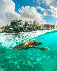 10 Top Things to Do in Samoa