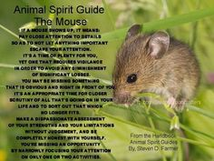 Animal Spirit Guide ~ The Mouse Animal Meanings, Animal Symbolism, Spirit Animal Totem, Animal Spirit Guides, Power Animal, Animal Magic, Spiritual Animal, Animal Medicine, Pet Mice