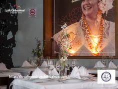 #turismoenchihuahua #visitachihuahua #ah-chihuahua #losalmendros TURISMO EN CHIHUAHUA Te habla sobre el Restaurante Los Almendros cuya comida está inspirada en la gastronomía yucateca, cultura culinaria de más de 400 años. Actualmente la cuarta generación de la Familia González, se ha encargado de seguir con la tradición y especialidad de esta deliciosa comida. Para información y reservaciones contáctenos al teléfono (656)413-16-86