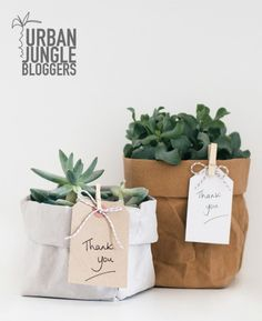 This Urban jungle was shared by {Abi Dare}. Find more Urban jungle ideas and inspiration at{mine} Flower Shop Decor, Flower Decorations, Green Gifts, Paper Bag Flowers, Paper Bags, Herb Garden Kit, Garden Art, Sustainable Wedding, Garden Shop