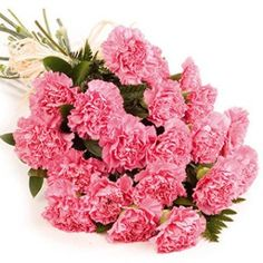 A 12 roses beautiful carnation of fresh flowers specifically mean to show love and care in charming way! Online send this #awesome gift now to your loved one @ 10%Sitewide Off. Use Coupon Code: NEW10.