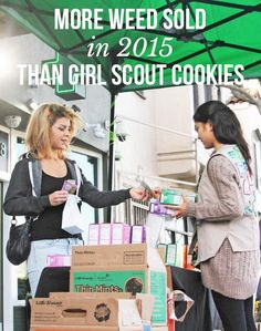 More weed sold in 2015 than girl scout cookies   but i bet the cookie sales increased proportionately!
