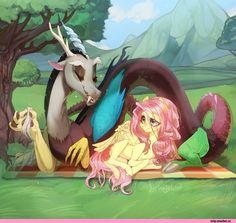 my little pony,Мой маленький пони,mlp песочница,фэндомы,RigelLaPererali,mlp art,Discord,minor,Fluttershy,Флаттершай,mane 6