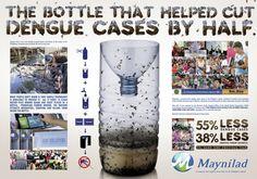 Dengue Bottle