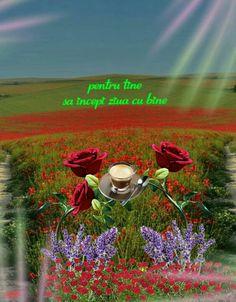 Joelle, Mountains, Nature, Travel, Good Morning, Naturaleza, Viajes, Destinations, Traveling