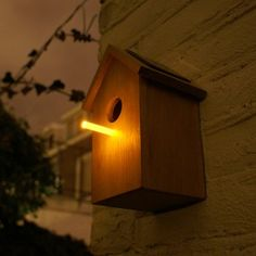 Glowstick birdhouse perch attracts some snacks for the birdies.  Much nicer than a bug zapper!